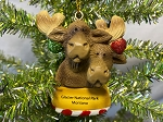 Moose Couple Ornament